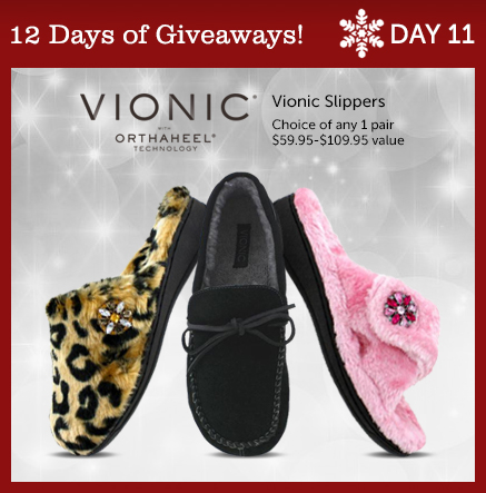 day-11-giveaway-1a